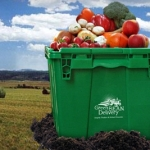 green bean delivery bin