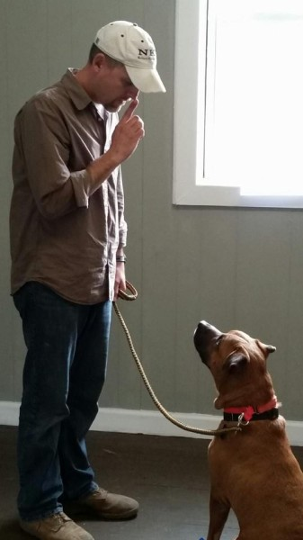 Saving Grace K9's veteran training with dog