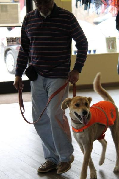 Saving Grace K9's veteran and dog training