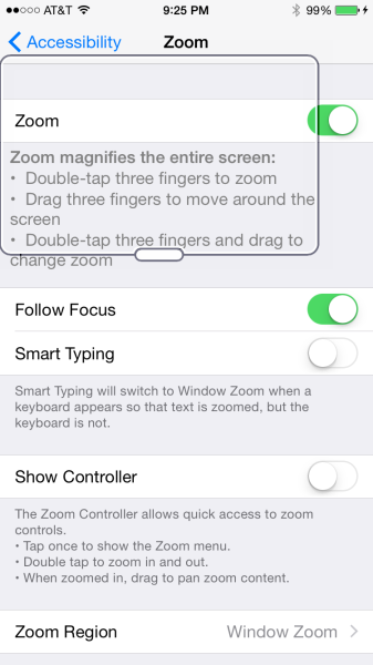zoom accessible