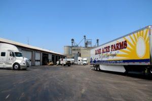 Rose Acre Farms semi truck