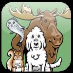 shelbys quest app