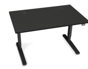Uplift Height Adjustable Sit Stand Desk Assistive