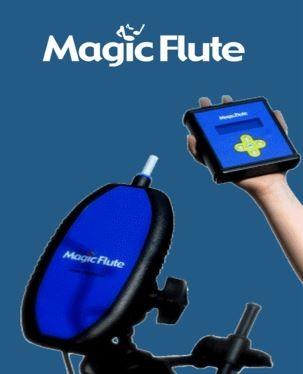 picture of Magic Flute