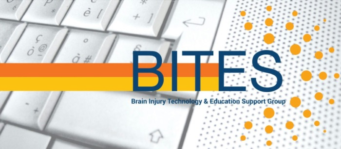 Brain Injury Technology & Education Support Group